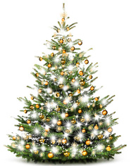 2.albero-luminoso