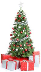 4.albero-tradizionale