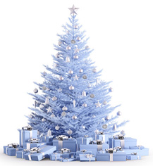 3.albero-bianco